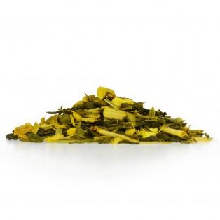APOrtha Gourmet Grüner Tee Kurkuma-Ingwer-Lemongras